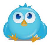 losing twitter followers